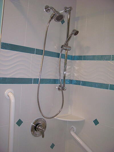 Hand-held Shower Unit and Safety Bars