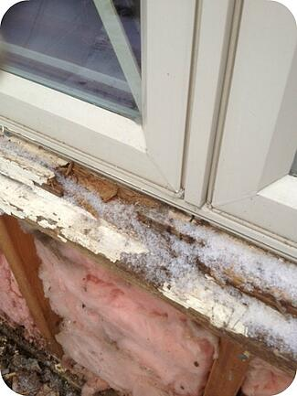 Windowsill with dry rot