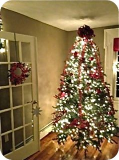 McClurg Christmas Tree