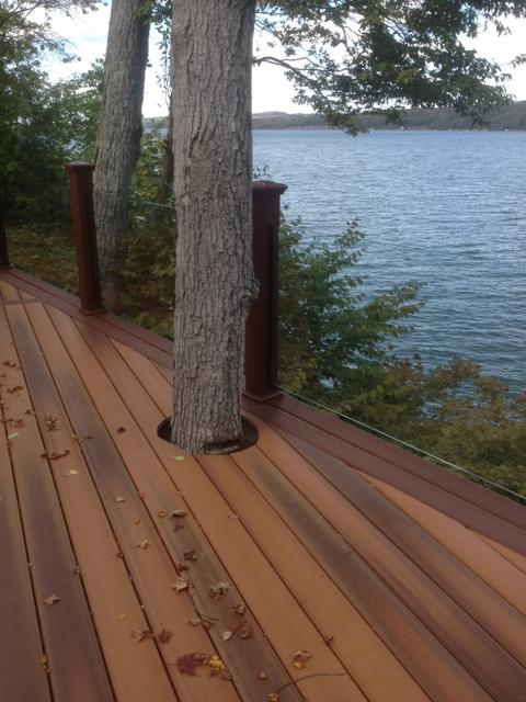 A composite deck incorporates a tree from the surrounding landscape. Clear glass rail panels provide a view of the lake.